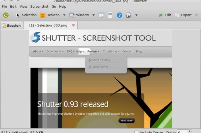 Capturar la pantalla en Linux con Shutter