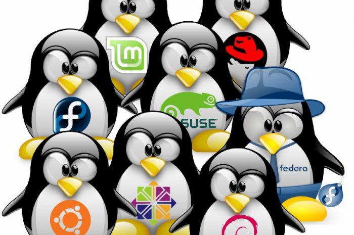 Qué distribución Linux elegir viniendo de Windows?
